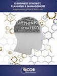 E-Business Strategy, Planning & Management E-Book