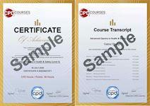 Professional Supervisor Training Certificate