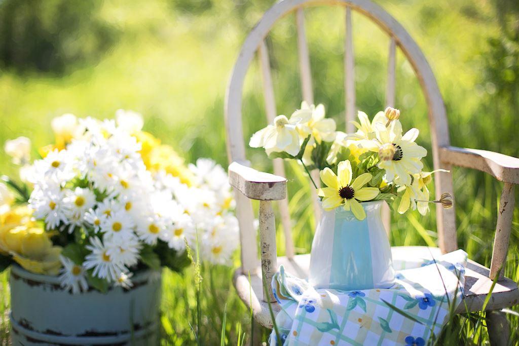 RHS Level 3, Principles of Garden Planning, Establishment ...