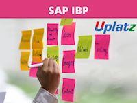 SAP IBP Course