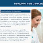 Care Certificate Slide