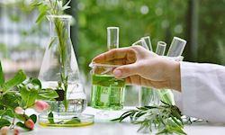 Organic Chemistry Demystified Training