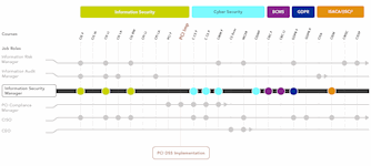 PCI DSS Implementation Career Pathway