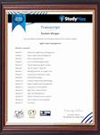 Study Plex -Transcript