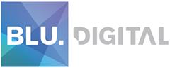 Jobs from Blu Digital Recruitment