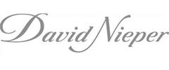 Jobs from David Nieper Limited