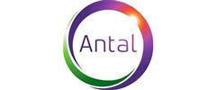 Jobs from Antal International