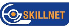 Jobs from Skillnet Ltd