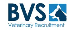 Jobs from BVS