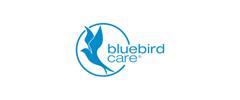 Jobs from Bluebird Care