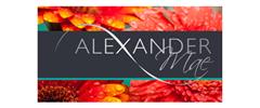 Jobs from Alexander Mae (Bristol) Ltd
